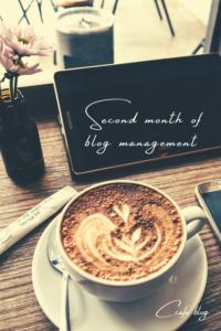 [運営報告]ブログ2ヶ月目のPV,収益について